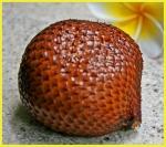 Snakeskin fruit (Salak)