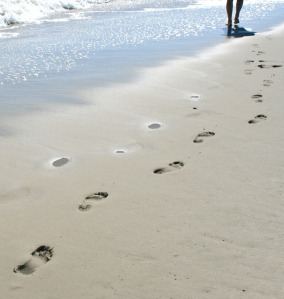 solution pic 5 we leave our footprints