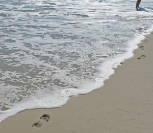 solution pic 6 sea deletes footprints