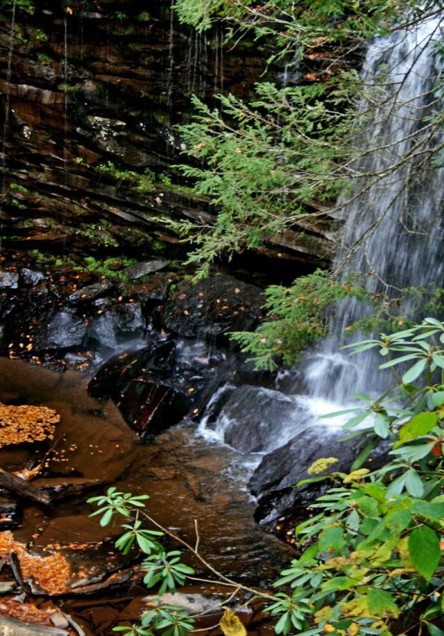 Upper Hills Creek Falls