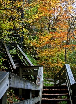 walkway to Hills Creek Falls