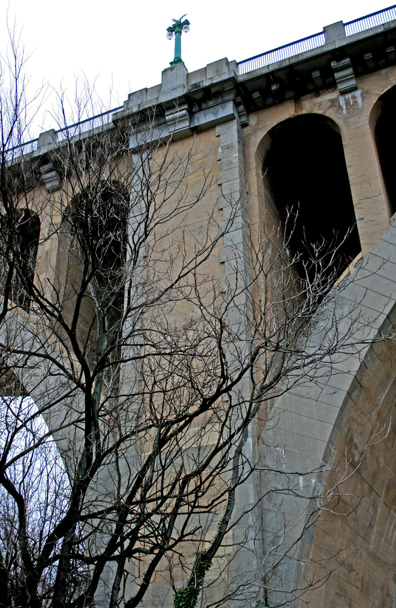 Sunday stills bridges symbols troubles and river crossings georgetown bridge detail biocorpaavc