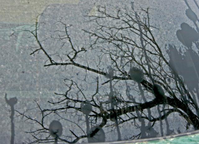 car window reflection