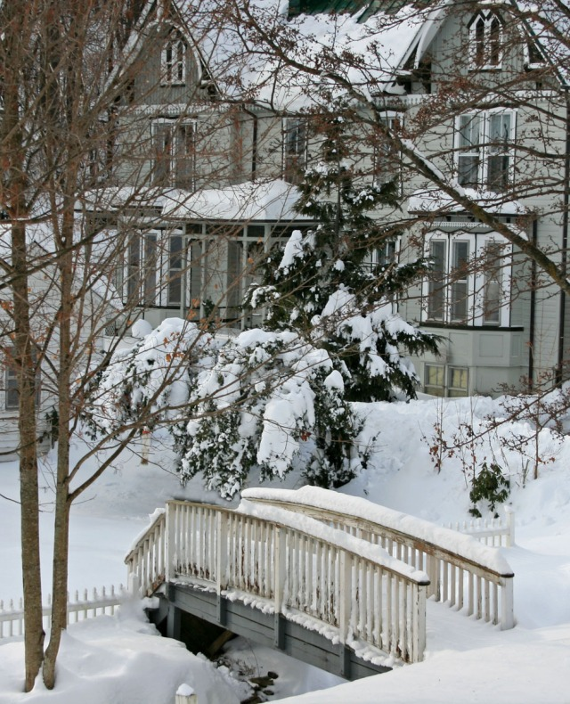 Backyard bridge in winter
