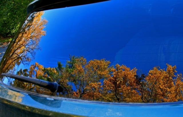 reflection in car window