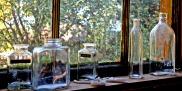 silvery bottles by window