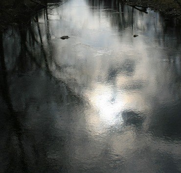 silvery water reflections