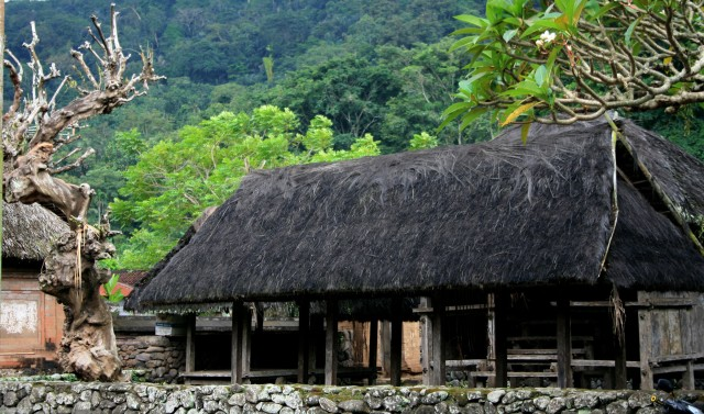 Black thatched building