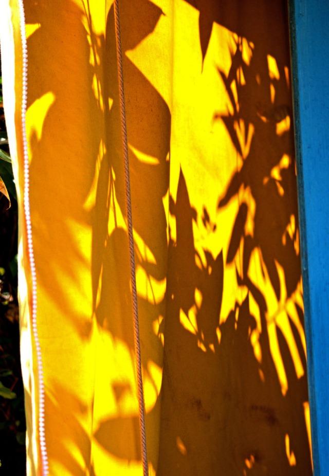 leaf shadows on yellow fabric