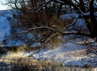 snowy branches over steamy river