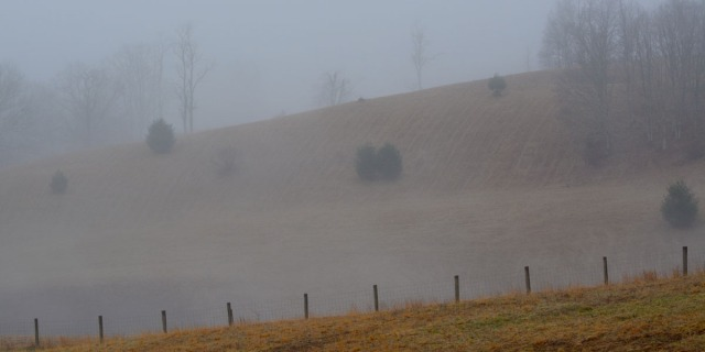 Hill in morning mist