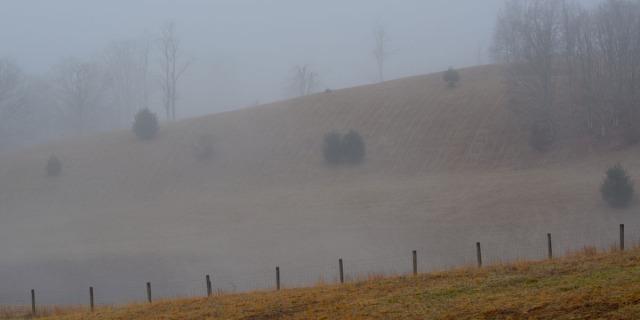 Hill in morning mist