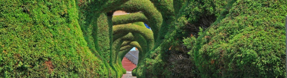 topiary header