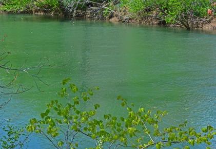 Cowpasture River