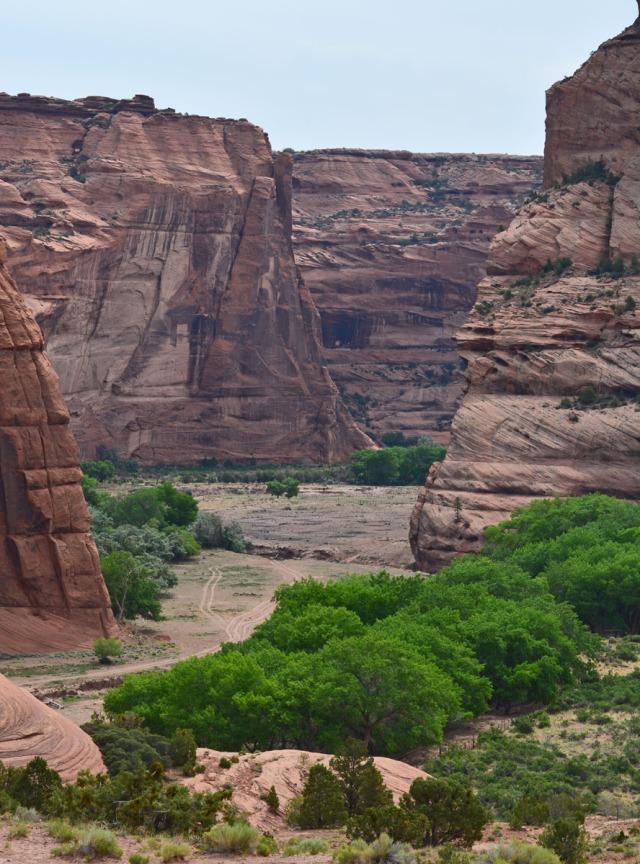 fertile canyon bottom