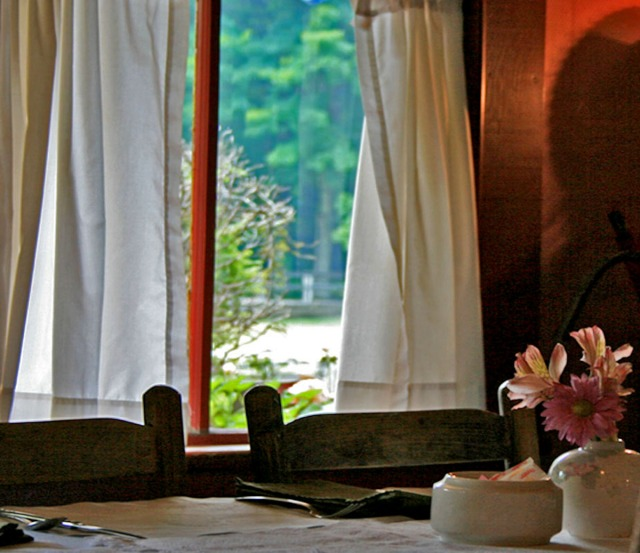 Restaurant window, Helvetia, WV