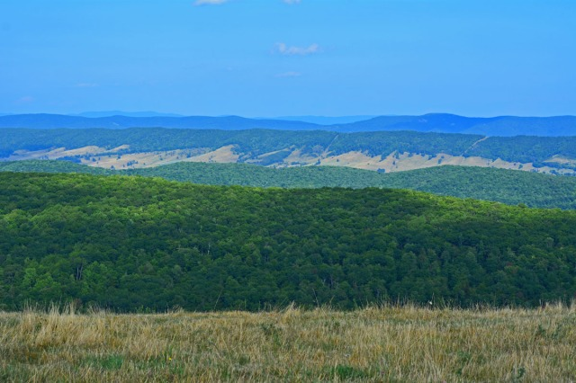 View from Allegheny Mountain