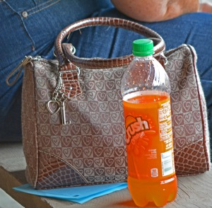 orange crush and handbag