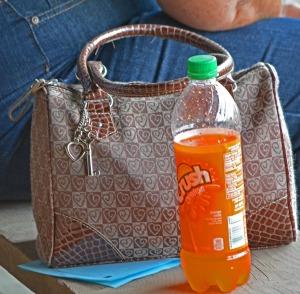 orange crush and handbag