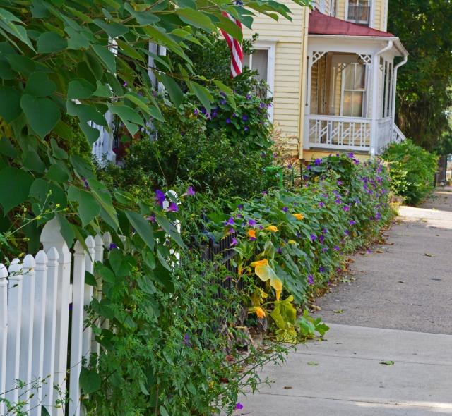 along the sidewalk