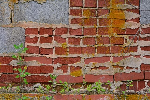 Bricks and cinderblock