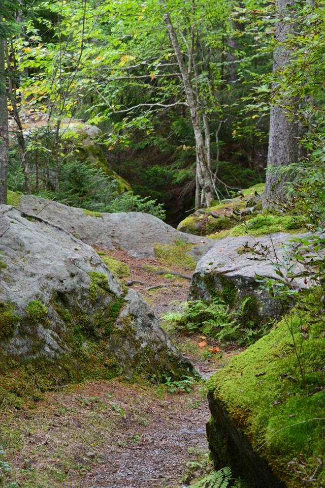 path between rocks