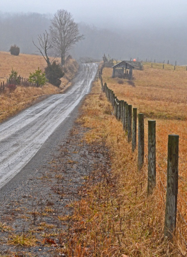 country road in the mist