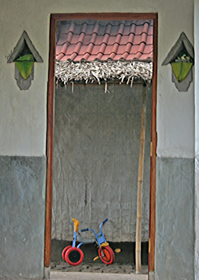Tricycle in entryway