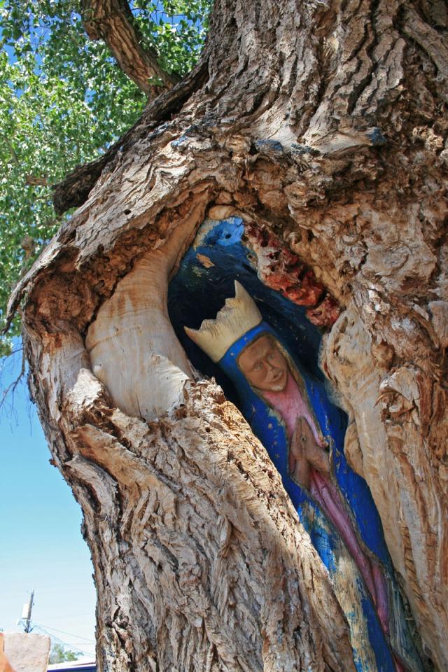 madonna tree sculpture