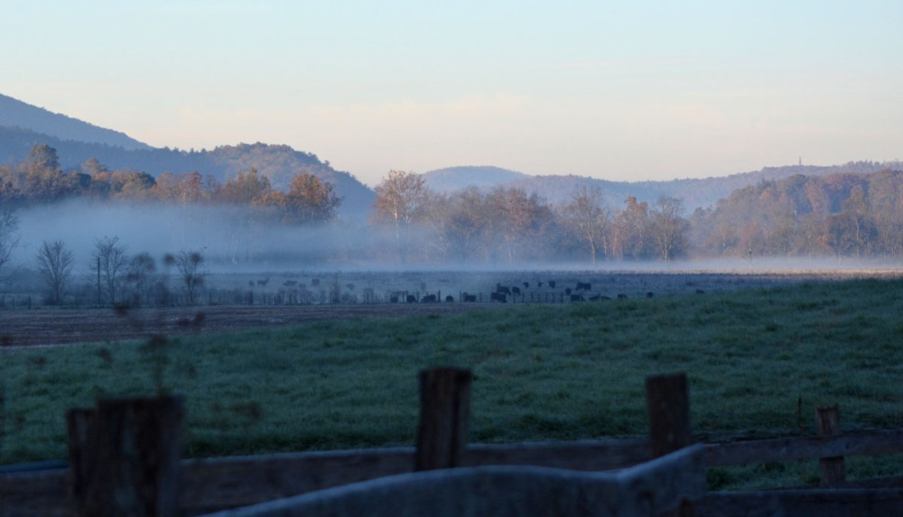 valley awakening