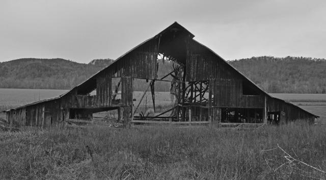 broken down barn in B&W