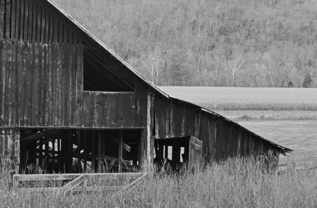 right wing of barn in B&W