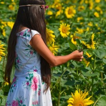 young girl with flowers in hair 120